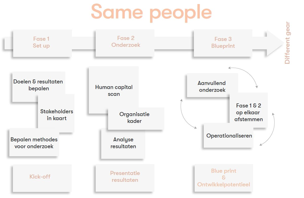same people - human capital scan - human model - proces - hrd groep
